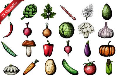 24 Vegetables Hand Drawn Sketch