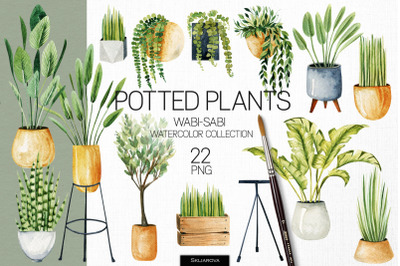 Potted plants. Watercolor clipart.