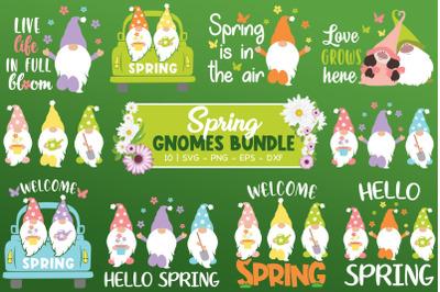 Spring Gnomes Bundle, Spring Svg, Gnomes Svg, Hello Spring Svg