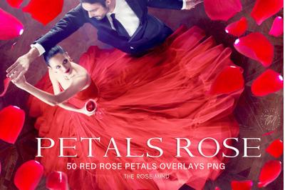 Overlays Petals red rose