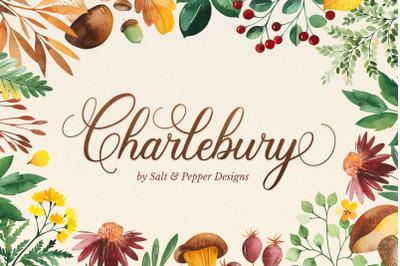 Charlebury Script Font - Script Fonts, Cursive Fonts, Calligraphy Font
