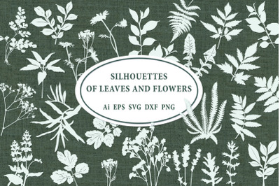 Silhouettes of leaves and flowers. SVG