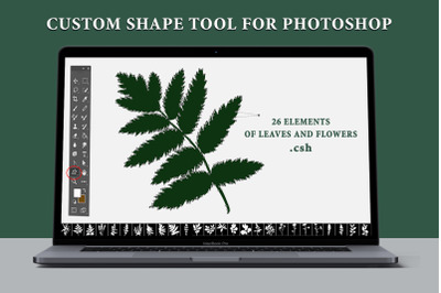 Leaves and flowers. Custom Shape Tool for Photoshop