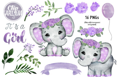 Purple Roses Girl Elephant 16 PNG Baby Shower Watercolor Set