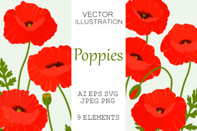 Poppies flowers. Poppies SVG. Poppy vector. Provence flower
