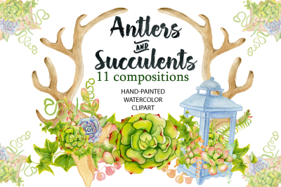 Antlers and succulents clip art. Boho watercolor