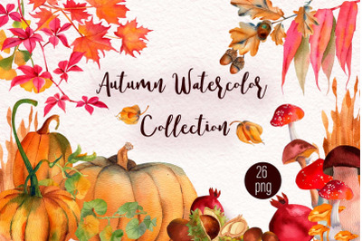 Watercolor Autumn woodland Collection