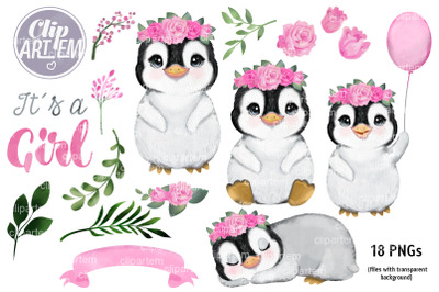Girl Penguin Floral Watercolor Bundle with roses, 18 PNG clip arts