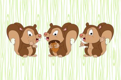 cute squirrel animal cartoon