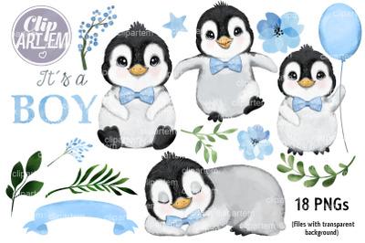 Very Sweet Baby Boy Penguin 18 PNG Watercolor clip art images Bundle