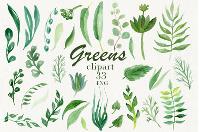 Watercolor greenery, clipart
