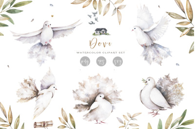 White Dove Peace Watercolor Set PNG & Vector