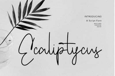 Ecaliptycus Script Font