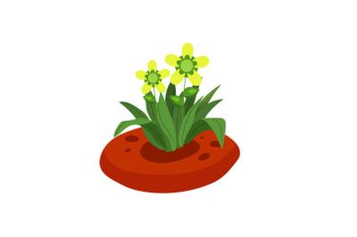 Spring Kawai Flower 13