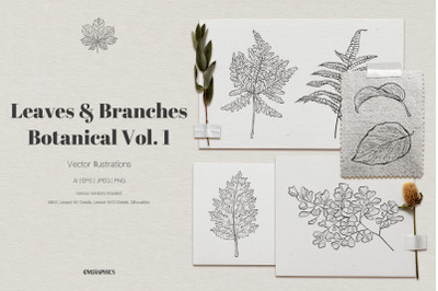 Leaves and Branches Botanical Vector Set Vol. 1