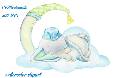 Cute elephant, sleeping. Watercolour clipart. A tropical animal. Print
