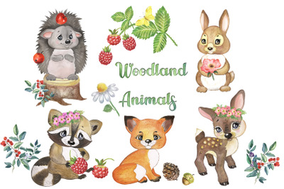 Woodland Animals Clipart. Forest Animal Clip art. Woodland Creatures.