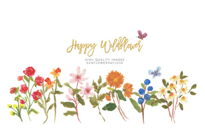 Wild field florals clipart, Watercolor Wildflowers