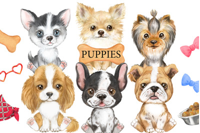 Puppies watercolor clipart. Cute little dogs, animal clipart, pet, dog