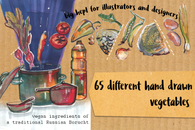 65 hand drawn vegetables