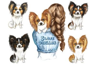 Papillon watercolor clipart. Dogs Papillon clipart, favorite pet