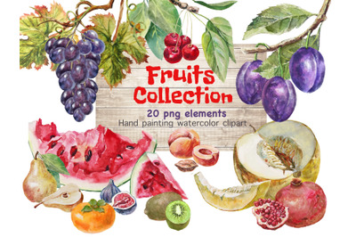 Fruits watercolor clipart .Food clipart for printable