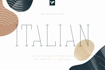 Italian Slab Serif - 24 fonts + More