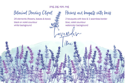 Hand-drawn Lavender flower, bouquets