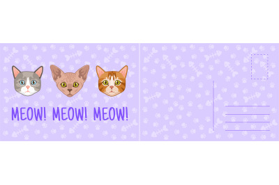 Meow cat card. Holiday postcard with funny kittens different breeds, m