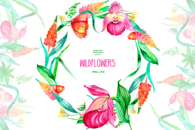 Watercolor wildflowers clipart