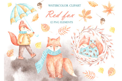 Fall. Fox watercolor clipart. Little fox. Illustrations for children.