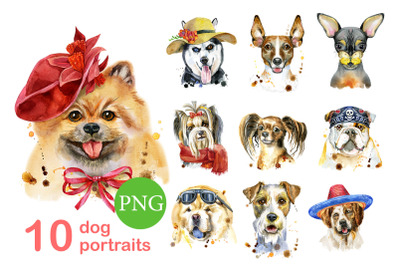 10 watercolor dog portraits 11