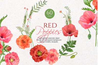 Red poppies watercolor collection