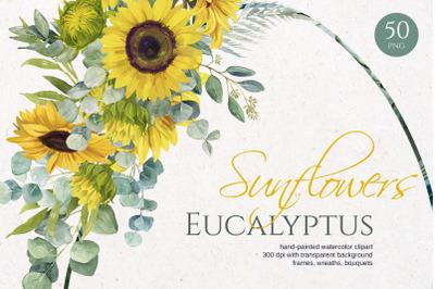 Sunflower Eucalyptus. Watercolor set