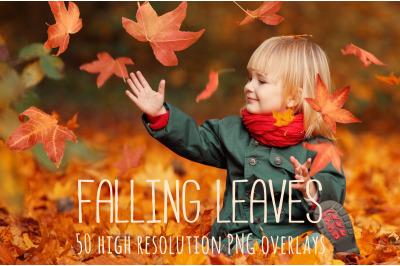 Falling autumn leaf overlays