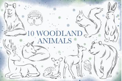 10 Woodland animals PNG