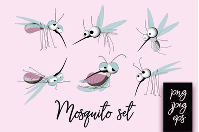 Mosquito collection.