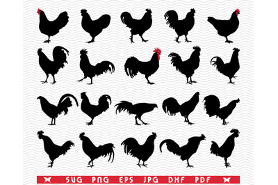 SVG Roosters Hens, Silhouettes digital clipart