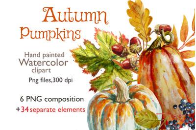 Autumn arrangements ,fall Pumpkins  ,watercolor clipart