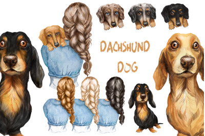 Dachshund dog watercolor clipart. Girls with dogs, dog png clipart