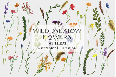 Watercolor wild meadow flowers and plants, PNG clipart
