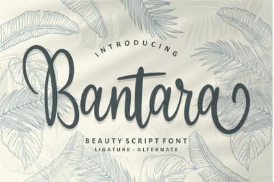 Bantara | Modern Script Font