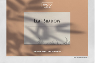 Leaf Shadow Overlays