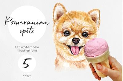 Pomeranian spitz. Watercolor dog illustrations. Cute 5 dog