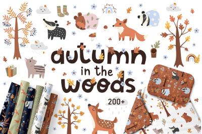 Woodland animals - baby clipart & pattern, nursery illustration