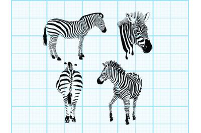 Zebra forest pattern