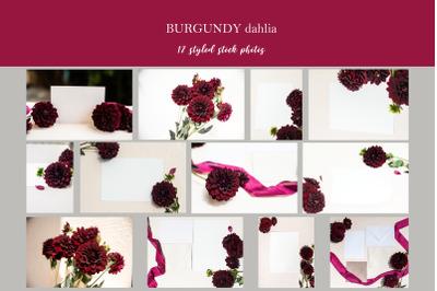 Burgundy Dahlia styled photos
