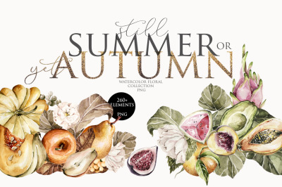 Summer or autumn watercolor clipart. Fall floral collection