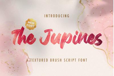 The Junipes - Textured Brush Font