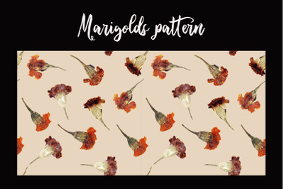 Marigolds Autumn pattern png, jpeg. real flowers